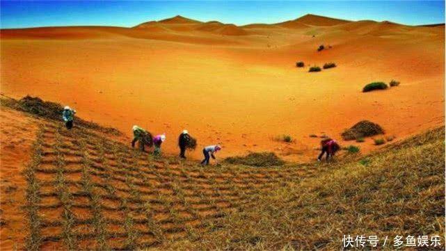 沙漠|我国首个即将消失的沙漠:如今80%成绿洲,堪称治沙工程的壮举