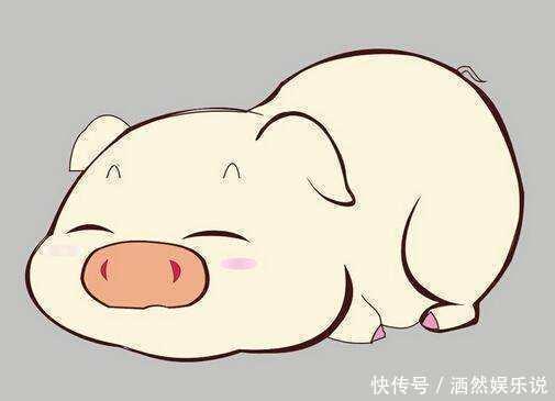 生肖豬的最佳配對, 隻要不離婚就註定能大富大貴