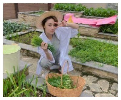 王祖藍五一在家只想種菜,超脫物質上的享受,你可以做到嗎?