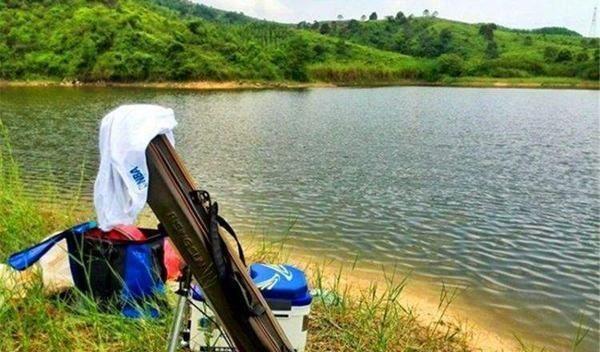 夏天钓鱼,需要掌握的5条规律,抓规律是连竿上鱼的关键